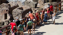 Colosseum Express Tour with Gladiators Privileged Entrance and Arena Floor, Rome, Historical &...