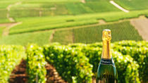 Luxury Champagne Region Day Trip from Paris with Private Champagne Estate Visit, Paris, Day Trips