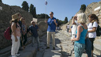 Pompeii and Mt Vesuvius Tour from Naples with Lunch and Wine Tasting by Private Coach, Naples, ...
