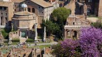 Rome Super Saver: Skip-the-Line Ancient Rome and Colosseum Walking Tour plus Frascati Wine Tasting...