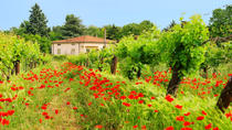 Tuscany in One Day Sightseeing Tour from Rome, Rome
