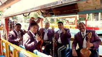 Essential Mexico City Customized Full-Day Private Guided Tour, Mexico City, Bus & Minivan Tours