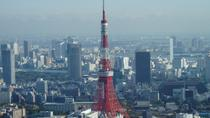 Full Day Private Custom Chartered Taxi Tour of Tokyo, Tokyo, Walking Tours