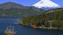 Private Chartered Taxi Tour to Hakone from Yokohama, Yokohama, Private Day Trips