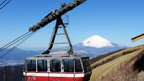 Private Chartered Taxi Tour to Hakone from Yokohama