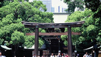 Private Van Tour of Tokyo with Field Trip plus, Tokyo, Bus & Minivan Tours