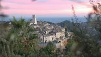 Small Group Half Day Excursion to Grasse and St Paul de Vence, Nice, Cultural Tours