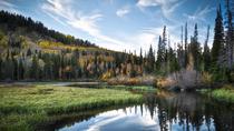 3-Hour Big Cottonwood Canyon Tour From Salt Lake City, Salt Lake City, Eco Tours