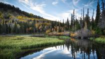 Half-Day Wasatch Mountain Tour From Salt Lake City, Salt Lake City, Day Trips