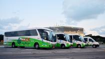 Arrival Transfer from Recife Airport to Your Hotel