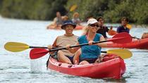 Kipu Zipline, Kayak, and Hiking Safari, Kauai, Ziplines