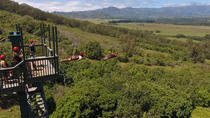 Treehouse Plus Zipline Course, Kauai, Ziplines