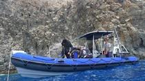 Immersioni guidate in barca per Qualified Diver alle Tartarughe, Ray spot, Tenerife, Day Cruises