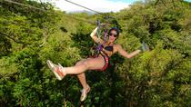 Buena Vista Combo Tour: Ziplining and Hot Springs from Guanacaste, Liberia, Ziplines