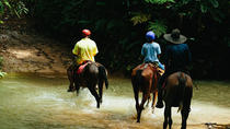 Horseback Riding and Waterfalls from Manuel Antonio, Quepos, Horseback Riding
