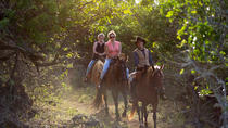 Sunset Horseback Ride, Oahu, Horseback Riding