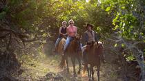 Sunset Horseback Ride, Oahu, Horseback Riding