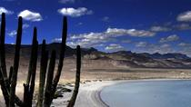 North La Paz Self-Drive Discovery Tour, La Paz, Full-day Tours