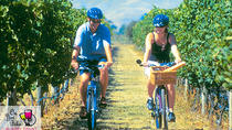 Hawkes Bay Wineries Self-Guided Bike Tour, Hastings, Bike Rentals