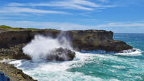 Beautiful Coastal Sightseeing Tour of Barbados, Barbados, Day Trips