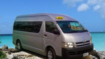 Private Full-Day Barbados Excursion, Barbados, Custom Private Tours
