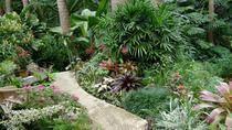Taste of Barbados sFull-Day Sightseeing Tour, Barbados, Full-day Tours