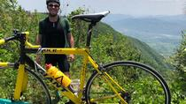 Shanghai Road Bicycle Rental, Shanghai, 4WD, ATV & Off-Road Tours