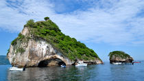 Half Day Sightseeing & Snorkeling Tour With Buffet Lunch and Open Bar, Puerto Vallarta, Snorkeling