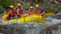 Royal Gorge Rafting and Zipline Tour, Cañon City, White Water Rafting & Float Trips