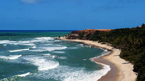 Pipa Beach Full Day Tour, Natal, Day Trips