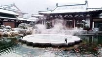 Private Customized Xian City Day Tour with Hot Spring SPA Experience, Xian, Thermal Spas & Hot ...