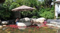 Private Customized Xian City Day Tour with Hot Spring SPA Experience, Xian, Thermal Spas & Hot...