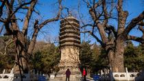Tanzhe Buddhism Temple Private Day Tour with Marco Polo Bridge, Beijing, Ports of Call Tours