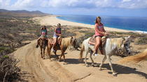 Beach Horseback Riding Tour for Beginners in Cabo San Lucas, Los Cabos, Horseback Riding