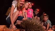 Alice Springs Desert Park Nocturnal Tour, Alice Springs, Attraction Tickets