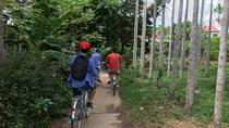 Full-Day Bike Tour of Hoi An and Cam Thanh Fishing Village, Hội An