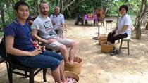 Private Enjoyable Hue City Tour - Bike Ride at Thuy Bieu Village - Boat Ride on the Perfume River -...