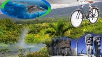 Kona Coffee Adventure Bike Tour, Big Island of Hawaii, Full-day Tours