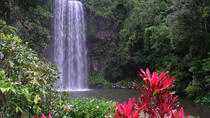 Atherton Tablelands Day Trip from Cairns Including Paronella Park and Millaa Millaa Falls, Cairns ...