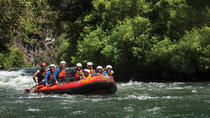 Rangitaiki River White Water Scenic Rafting from Rotorua, Rotorua, White Water Rafting & Float Trips