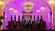 Vienna Combo: Danube River Cruise, Dinner and Schonbrunn Palace Concert, Vienna, Day Cruises