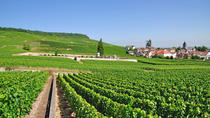 Small-Group Wine-Tasting Trip to the Champagne Region from Paris, Paris, Wine Tasting & Winery Tours