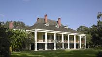Swamp Boat Ride and Southern Plantation Tour from New Orleans, New Orleans, null
