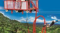 Extreme Bungy Jump in Monteverde, Monteverde, Adrenaline & Extreme