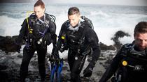 3-Day Gold Coast PADI Rescue Diver Certification Course, Gold Coast, Scuba Diving