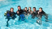 3-Day PADI Open Water Certification Course on the Gold Coast, Gold Coast, Scuba Diving