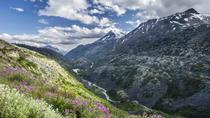 White Pass Summit and Yukon Suspension Bridge Tour, Skagway, Cultural Tours