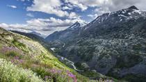 White Pass Summit and Yukon Suspension Bridge Tour, Skagway, Cultural Tours