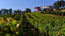 Saint-Emilion Wine Tour and Tastings from Bordeaux, Bordeaux, Wine Tasting & Winery Tours