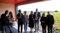 Small-Group Saint-Émilion Food and Wine Tour with Tasting from Bordeaux, Bordeaux, Lunch...